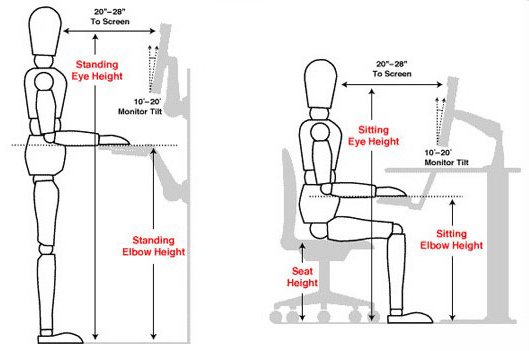 Correct Standing and Sitting Posture